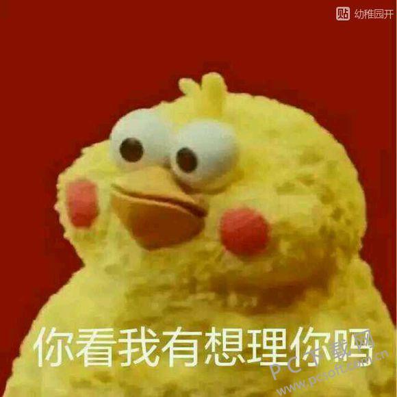 滑稽表情包 免费版 查看 猥琐猫表情包 官方版 查看 鸡表情包 【动态图片